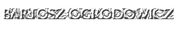 Bartosz Ogrodowicz - Official Website